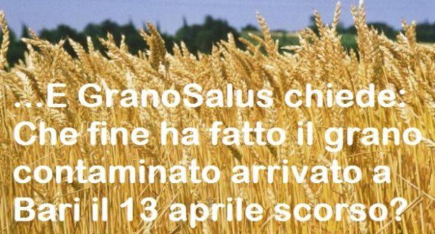 …E GranoSalus chiede: Che fine ha fatto il grano contaminato arrivato a Bari il 13 aprile scorso?