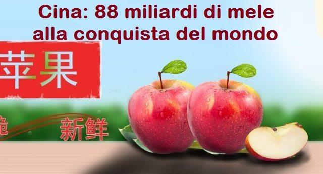 Cina. 88 miliardi di mele alla conquista del mondo