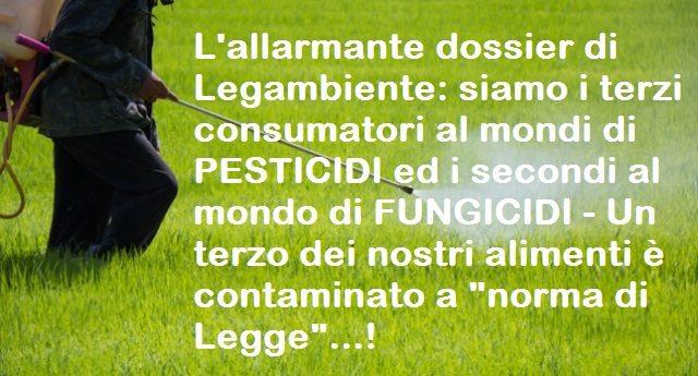 """L'allarmante dossier di Legambiente: siamo i terzi consumatori al mondi di PESTICIDI ed i secondi al mondo di FUNGICIDI – Un terzo dei nostri alimenti è contaminato a """"norma di Legge""""…!"""