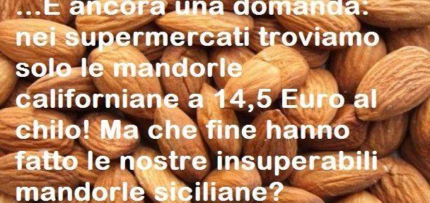 …E ancora una domanda: nei supermercati troviamo solo le mandorle californiane a 14,5 Euro al chilo! Ma che fine hanno fatto le nostre insuperabili mandorle siciliane?