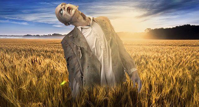 ATTENZIONE – Stai mangiando OGM senza saperlo – Ecco la lista nera elaborata da Greenpeace degli alimenti di uso comunissimo che contengono OGM !!