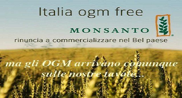 Attenzione – Mangi OGM senza saperlo – in Italia divieto di coltivazione ma ammessa l'importazione – Ecco la lista di alimenti e additivi che contengono o possono contenere Ogm e che tutti i giorni ci ritroviamo a tavola!