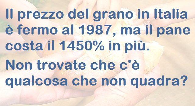 Il prezzo del grano in Italia è fermo al 1987, ma il pane costa il 1450% in più. Non trovate che c'è qualcosa che non quadra?