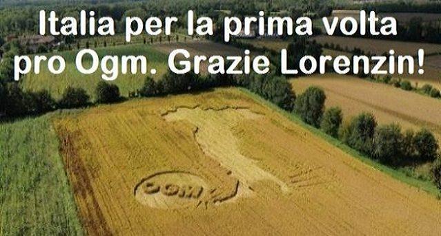 L'Italia per la prima volta pro Ogm. Grazie Ministro Lorenzin!