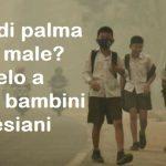 L'olio di palma