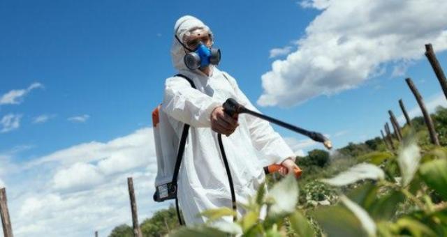 Clorpirifos: il pesticida che sta uccidendo lentamente i bambini della California… per il momento!