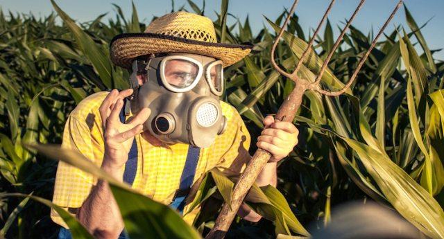 """Correva l'anno 2013: lo scienziato dell'Epa Marion Copley scriveva a Monsanto """"Il glifosato causa il cancro""""… Ma la multinazionale se ne è fregata altamente, continuando ad immolare la Gente all'altare del dio Denaro!"""