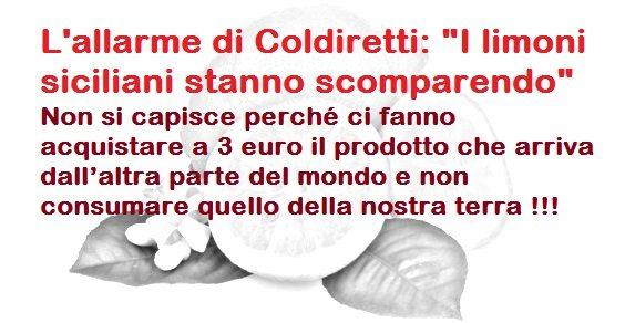 """L'allarme di Coldiretti: """"I limoni siciliani stanno scomparendo"""" – Non si capisce perché ci fanno acquistare a 3 euro il prodotto che arriva dall'altra parte del mondo e non consumare quello della nostra terra !!!"""
