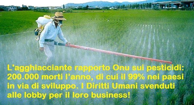 L'agghiacciante rapporto Onu sui pesticidi: 200.000 morti l'anno, di cui il 99% nei paesi in via di sviluppo. I Diritti Umani svenduti alle lobby per il loro business