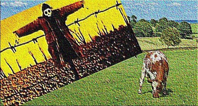 Il latte fa bene? Sicuramente NO se pieno di somatotropina, l'ormone by Monsanto… Riflettete: una mucca 40 anni fa produceva in media dai 10 ai 15 litri di latte al giorno. Oggi, con il trattamento di Monsanto, ne produce 120! Lo trovate normale??