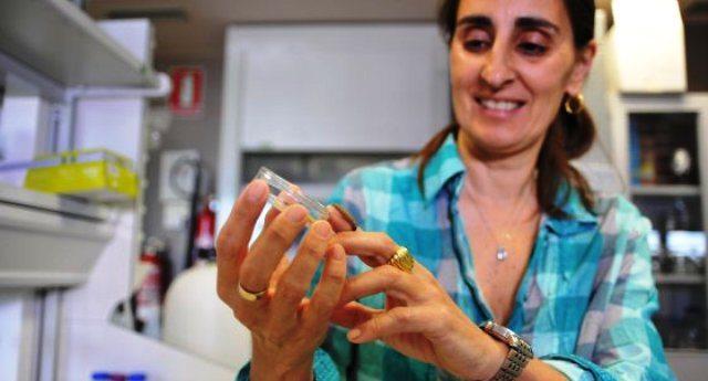 """Grandissimo scalpore per la scoperta del Bruco mangiaplastica, ma non dicono che la scopritrice Federica  Bertocchini è senza lavoro per i tagli alla ricerca voluti dall'OCSE: """"Tornerei in Italia, se avessi proposte""""…!!"""