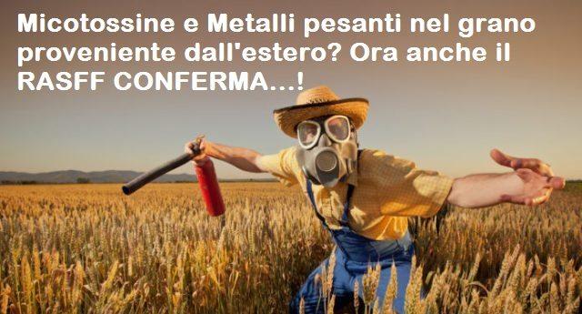 L'Allarme di Granosalus per Micotossine e Metalli pesanti nel grano proveniente dall'estero? Ora anche il RASFF (sistema di controllo della Commissione Europea e dell'EFSA – Autorità per la sicurezza alimentare) CONFERMA…!