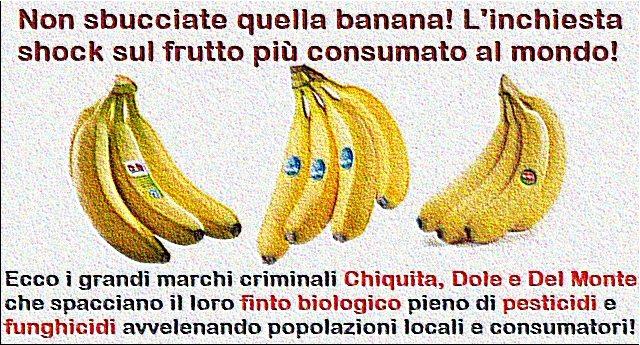 Non sbucciate quella banana! L'inchiesta shock sul frutto più consumato al mondo!