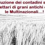 contadini siciliani