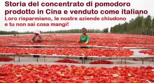 Storia del concentrato di pomodoro prodotto in Cina e venduto come italiano – Loro risparmiano, le nostre aziende chiudono e tu non sai cosa mangi!