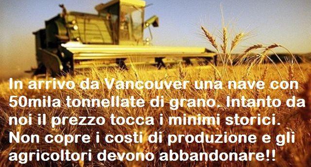 Come si uccide l'Agricoltura? In arrivo da Vancouver una nave con 1600 tir di quella porcheria che in Canada si ostinano a chiamare grano. E intanto da noi il prezzo crolla del 48%, tocca i minimi storici e non copre i costi di produzione costringendo gli agricoltori ad arrendersi!!