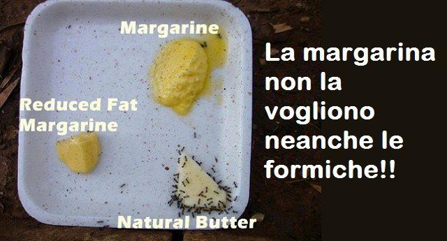 """Finalmente smascherata la bufala della margarina! Una ignobile truffa al folto esercito degli ingenui consumatori del """"light""""… E' solo un grasso industriale di scarsa qualità, costituito da grassi polinsaturi (facilmente ossidabili) e idrogenati. Un prodotto artificiale tutt'altro che salutare!"""
