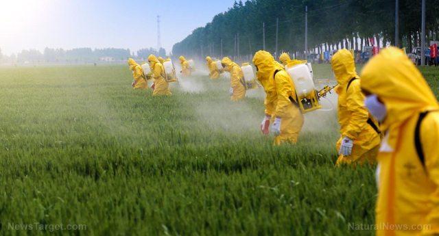 L'Agricoltura che uccide: pesticidi e cancro al fegato