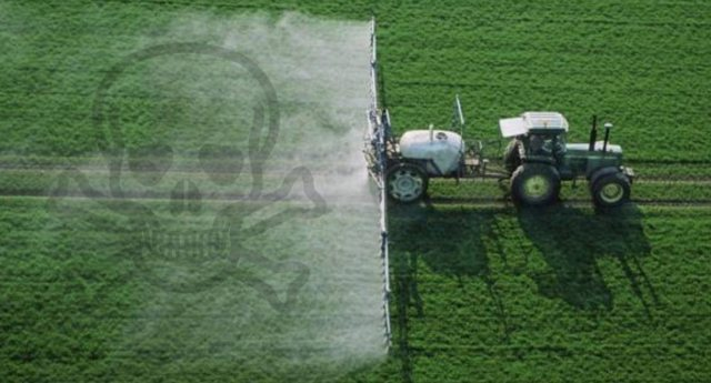 Incredibile ma vero: Glifosato, l'Ue vuole rinnovare l'uso del pesticida per altri dieci anni. Monsanto e le lobby dei veleni ringraziano! …Forse domani i Nostri figli ringrazieranno un po' di meno!