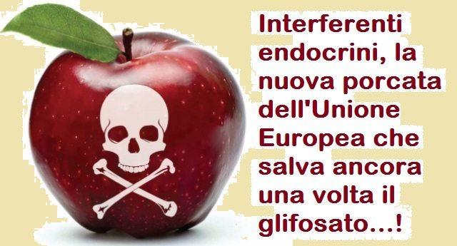 Interferenti endocrini, la nuova porcata dell'Unione Europea che salva ancora una volta il glifosato…!
