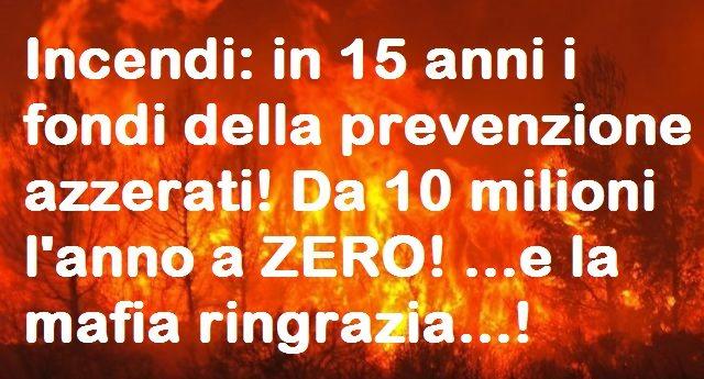 Incendi: in 15 anni i fondi della prevenzione azzerati! Da 10 milioni l'anno a ZERO! …e la mafia ringrazia…!