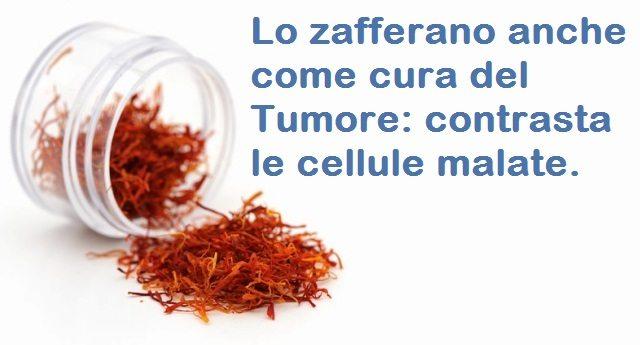 Lo zafferano anche come cura del Tumore: contrasta le cellule malate.