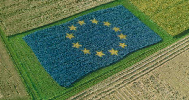 Vergognoso – Da Regione e UE soldi agli agricoltori siciliani per non coltivare il nostro grano. E così il grano al glifosato canadese avrà via libera!!