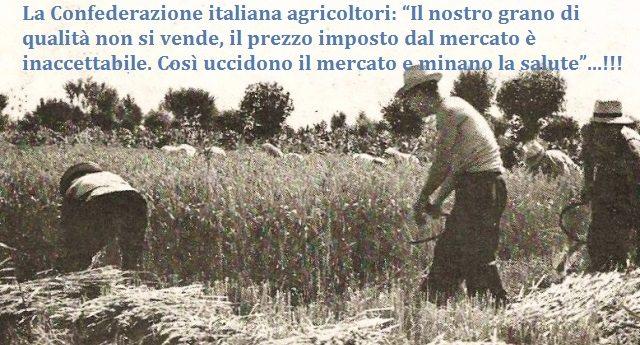 """La Confederazione italiana agricoltori: """"Il nostro grano di qualità non si vende, il prezzo imposto dal mercato è inaccettabile. Così uccidono il mercato e minano la salute""""…!!!"""