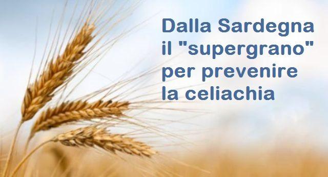 Dalla Sardegna il supergrano per prevenire la celiachia