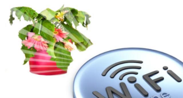L'agghiacciante esperimento di studenti danesi sull'inquinamento elettromagnetico: piante poste vicino a router wi-fi se tutto va bene non crescono, ma il più delle volte muoiono! …E voi che state leggendo quest'articolo, come vi sentite?