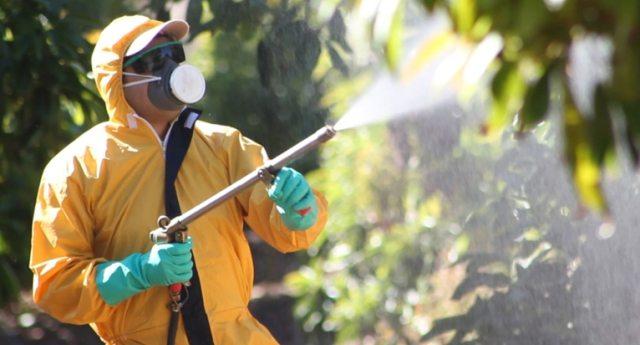 TRENTO: agricoltori vogliono passare al Biologico, ma qualcuno avvelena i frutteti