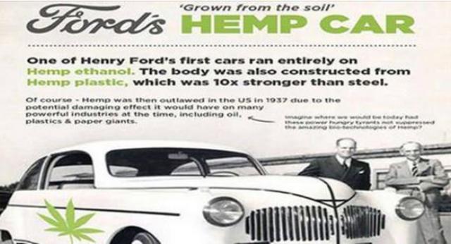 Correva l'anno 1941. Henry Ford realizzò un'auto interamente realizzata in canapa e alimentata ad olio di canapa. Economica, resistente ed ecologica. Ma poi le Lobby si resero conto che la Canapa per loro era un pericolo e…