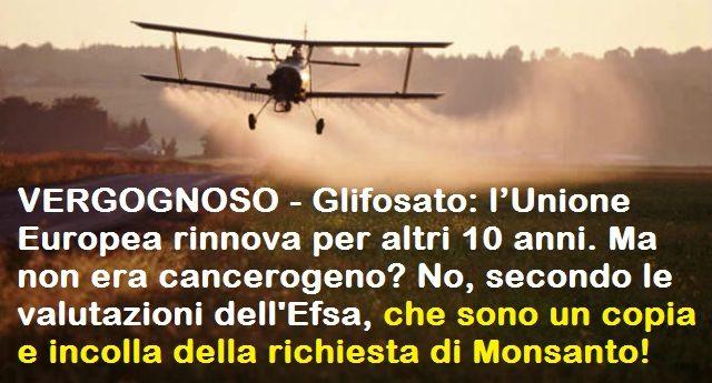 VERGOGNOSO – Glifosato: l'Unione Europea rinnova per altri 10 anni. Ma non era cancerogeno? No, secondo le valutazioni dell'Efsa, che sono un copia e incolla della richiesta di Monsanto!
