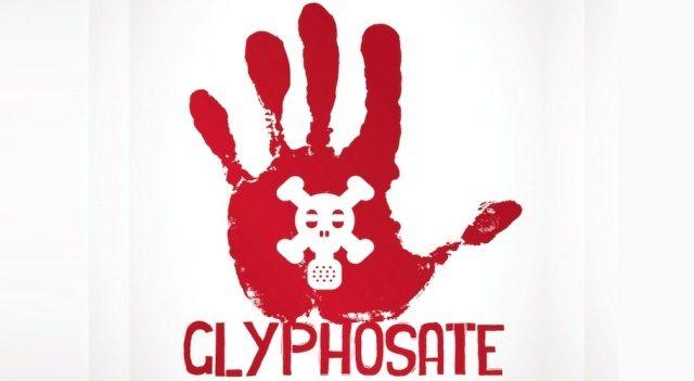 Glifosato, l'Efsa – Autorità Europea per la Sicurezza Alimentare – continua a giocare sulla pelle della gente e assolve per la seconda volta il pesticida Monsanto! Potenza delle Multinazionali!