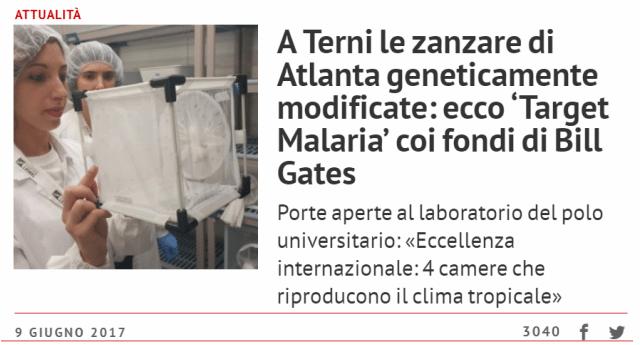 Malaria – Quell'articolo sulle zanzare pubblicato a giugno scorso da Umbria24 ora comincia a destare serie preoccupazioni…!!