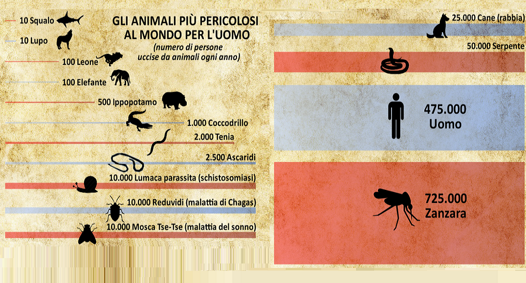 Non solo Malaria – Le zanzare sono gli animali più pericolosi al mondo!