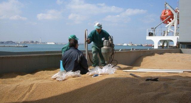 VIDEO ALLUCINANTE – Ecco le porcherie contenute nel grano estero che arriva con le navi nei nostri porti. E queste porcherie ce le fanno mangiare…