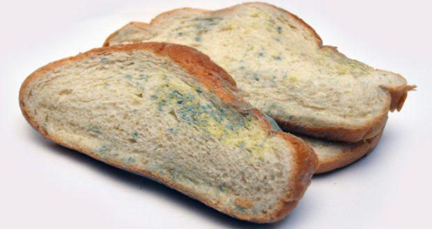Come verificare se il pane che mangiamo contiene o no micotossine