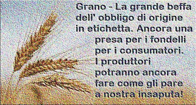 """Ricordate in ns. articolo: """"Indicare l'origine del grano sulla pasta? La Barilla dice NO… Chiedetevi Perchè, soprattutto quando fate la spesa""""? Beh, la norma alla fine è solo una presa per i fondelli. I produttori potranno ancora fare come gli pare a nostra insaputa!"""