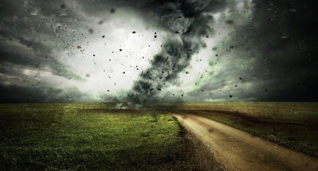 L'appello di Granosalus: CETA che fare? Per evitare il ciclone sul grano e sulla democrazia dite a Renzi e Berlusconi di non votare
