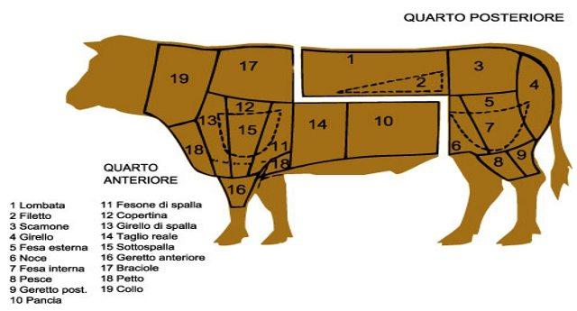 Francia, carne di mucca con tubercolosi venduta nei supermercati… E noi possiamo stare tranquilli?