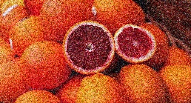 Un virus sta distruggendo le arance rosse siciliane, una delle eccellenze della nostra terra e uniche al mondo. Rischiano di scomparire per sempre, ma il governo se ne frega altamente!