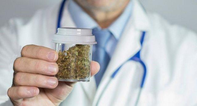 La cannabis per i pazienti è praticamente introvabile, ma il governo distrugge quella prodotta a Rovigo!