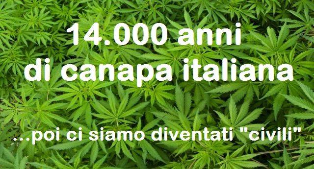 14.000 anni di canapa italiana