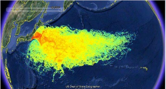 I danni irreparabili provocati dal disastro nucleare di Fukushima e di cui nessuno parla più…