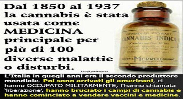 Cannabis terapeutica? Non è una novità: dal 1850 al 1937 è stata la principale medicina per più di 100 malattie… Poi le multinazionali hanno stabilito che faceva male …ai loro affari!