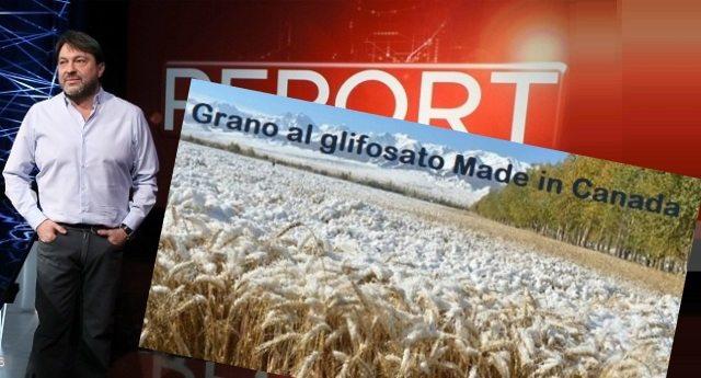 Anche Report conferma: la pasta che mangiamo? Fatta col grano al glifosato canadese! …E racconta come ci stanno avvelenando!