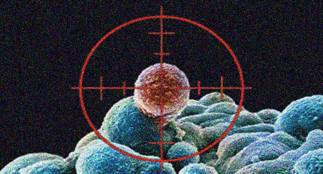 Scienza – Una speranza nella lotta contro il cancro. Scoperte molecole capaci di colpire con precisione le cellule tumorali.