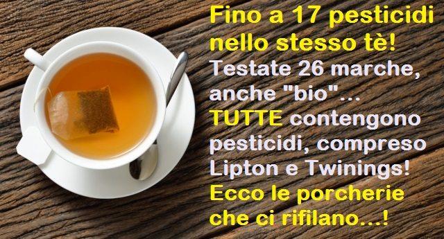 """Fino a 17 pesticidi nello stesso tè! Testate 26 marche, anche """"bio"""", TUTTE contengono pesticidi, compreso Lipton e Twinings! Ecco le porcherie che ci rifilano…!"""