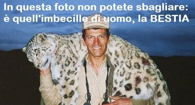 Usa – Uccide un rarissimo leopardo delle nevi e posa con il trofeo. Ecco la petizione per incriminarlo. E questo idiota ride pure…!